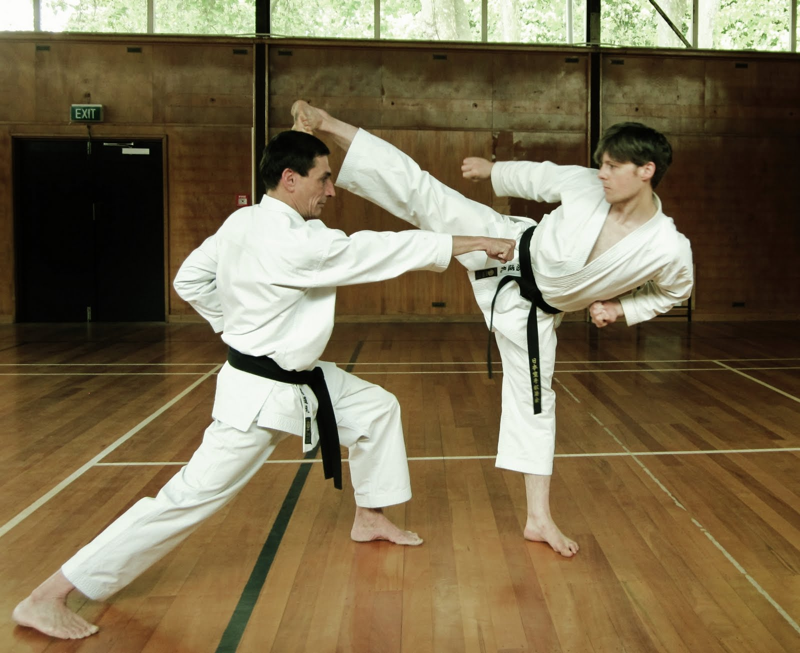 karate-health-benefits